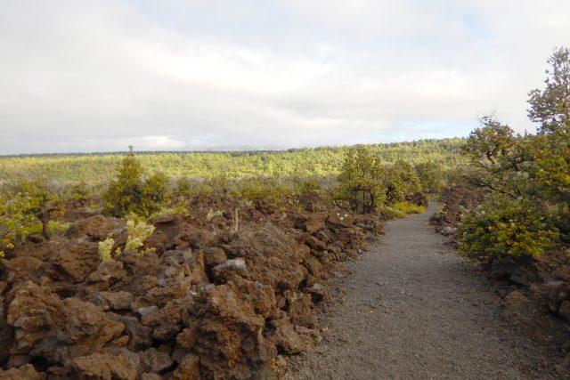 溶岩に負けた兵士たちの足跡 ハワイ島 Footprints