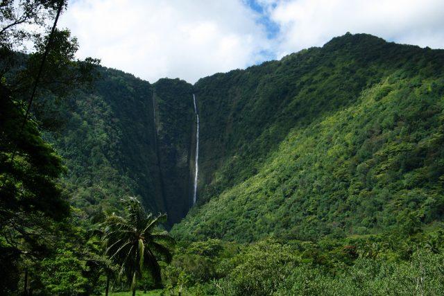 ハワイ島最大のヒーリングスポット、絶景と神秘のワイピオ渓谷
